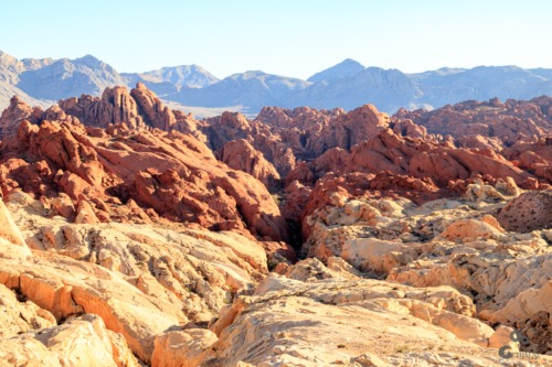 Valley of Fire, Nevada Nevada  Woestijn Valley of Fire The Wave Las Vegas